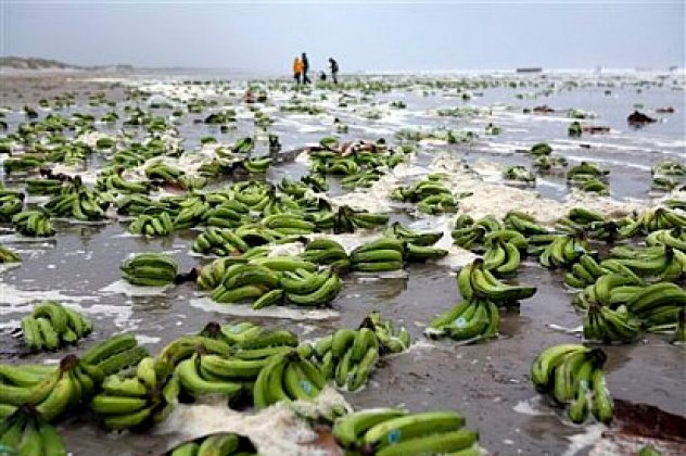 Bananas-Washed-Ashore