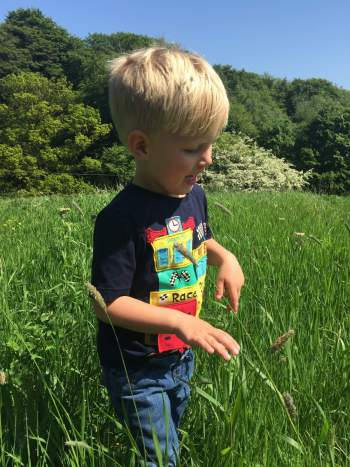A day out at Durham botanic garden with a toddler walking through swishy swashy grass