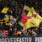 Why Watford have made a mistake in releasing Steven Berghuis on loan