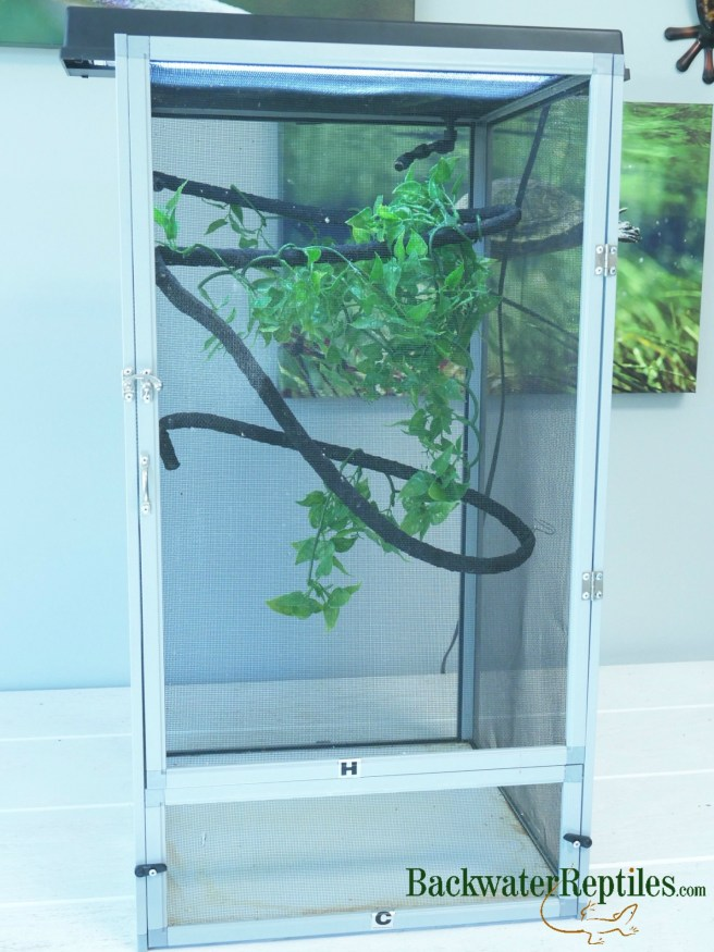 simple chameleon cage setup