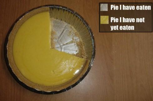 pie-chart-20090811-123901