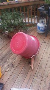 chima bucket