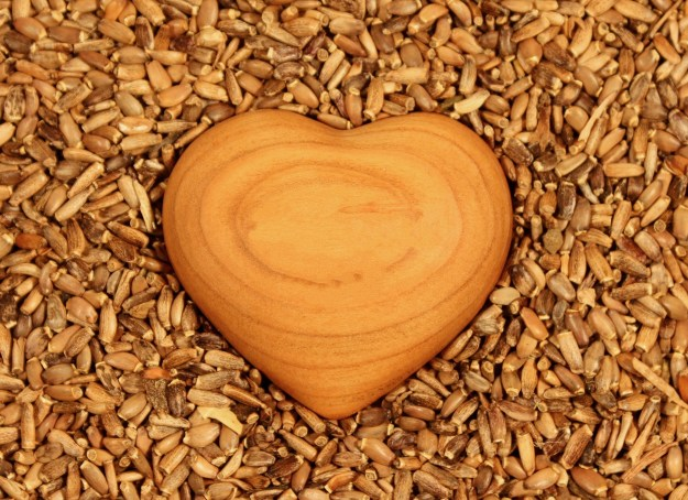 Heart with seeds. Image courtesy Pixabay. Kindness