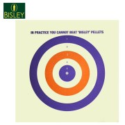 Bisley red white blue target
