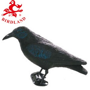 East Anglian Crow Decoy