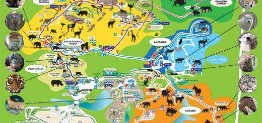 mapa do zoo
