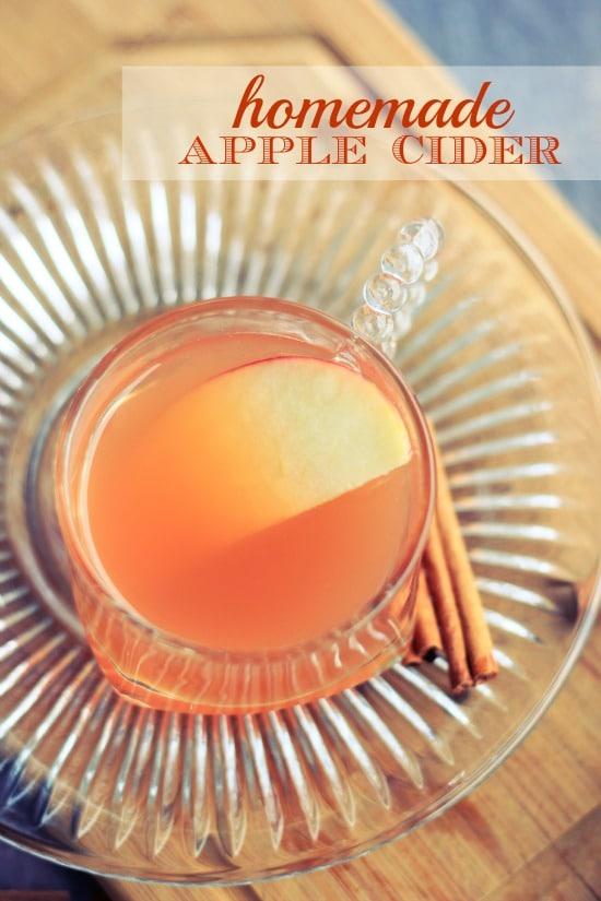 Homemade Crockpot Apple Cider Recipe- Baker Bettie