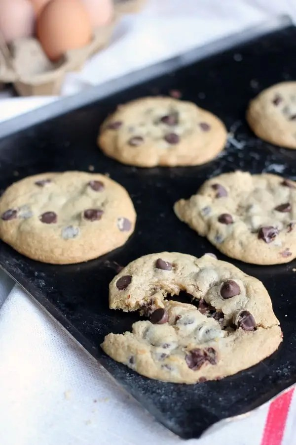 Soft and Chewy Chocolate Chip Cookies- Baker Bettie