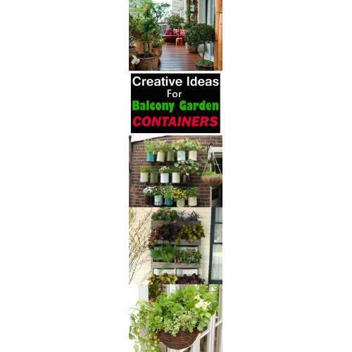 Medium Crop Of Balcony Gardening Ideas