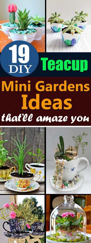 Medium Of Diy Mini Garden Ideas