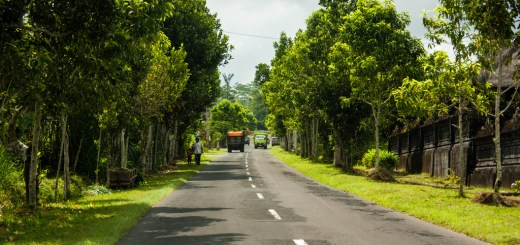 Bali road by Patchworker1302