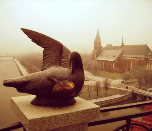 Kant island, Kaliningrad. Photo © by Julia Nikitina