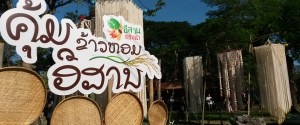 Thailand Tourism Festival Review!