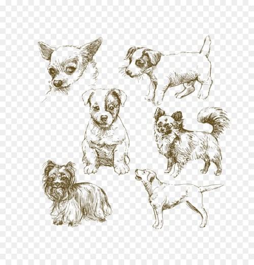 Medium Of Realistic Dog Drawing