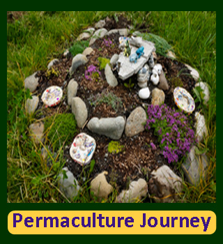 Portal to all things Permaculture: My project for earning my PDC. Lots of information and links.