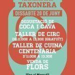 festa major taxonera