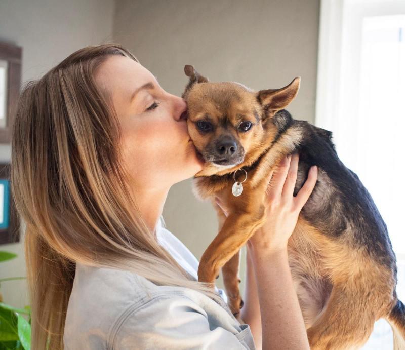 Cool Jessica Gary Celebrity Dog Moms Who Make Dog Look Good Crazy Dog Lady Svg Crazy Dog Lady Rescue