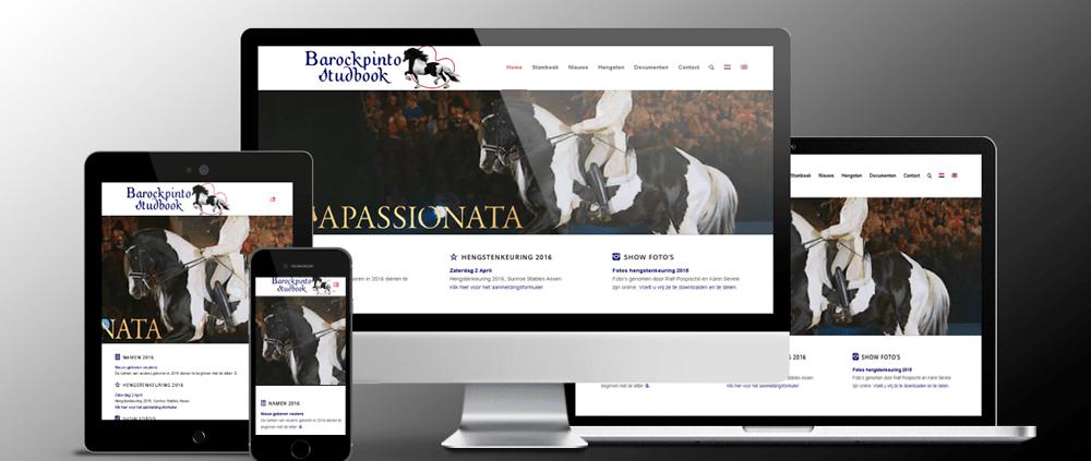 BarockPinto-Website