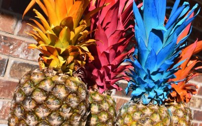 Pretty Painted Pineapples