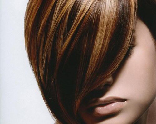 Highlights for Brown Hair, Lowlights for Blonde Hair, Ginger streaks ...