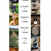 Hooray! Ampelos Cellars Does the Math for Wine Lovers.