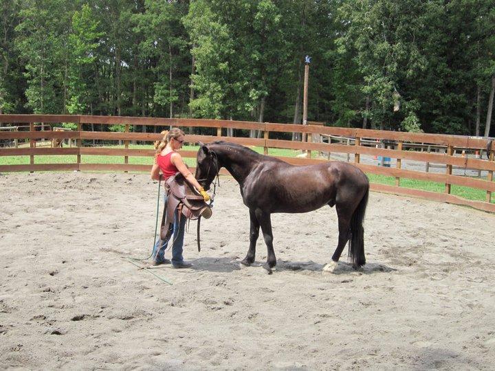 Gus and Saddle