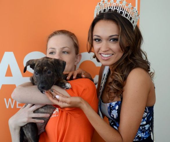 Miss New York USA styles shelter dogs at ASPCA NYC