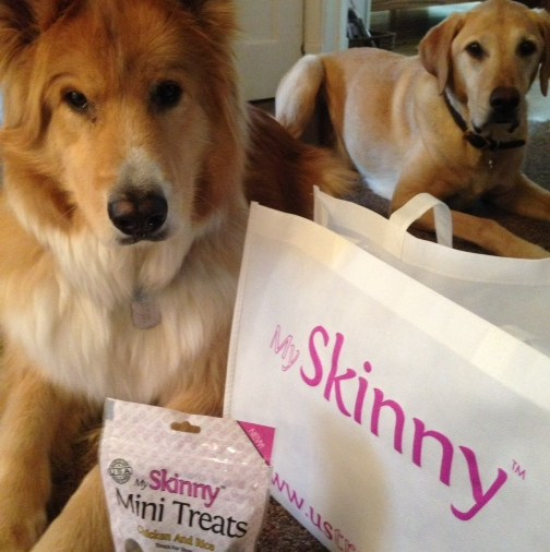 My Skinny Treats