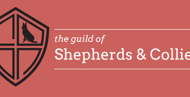Get paid for your herding dog expertise-Guild of Shepherds & Collies