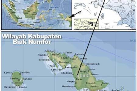 location map   hotel basana inn biak papua