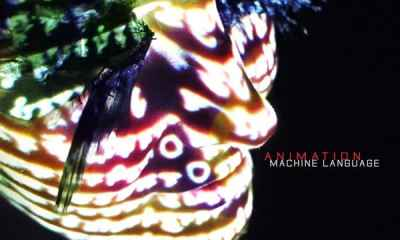 Machine Language, the Last Album by Bob Belden's Animation, Featuring Bassist Bill Laswell