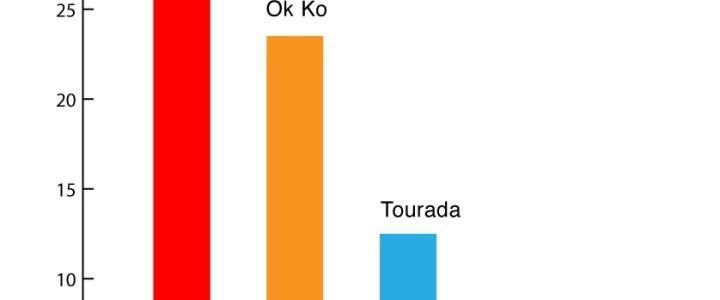 Tourada retira audiência à RTP