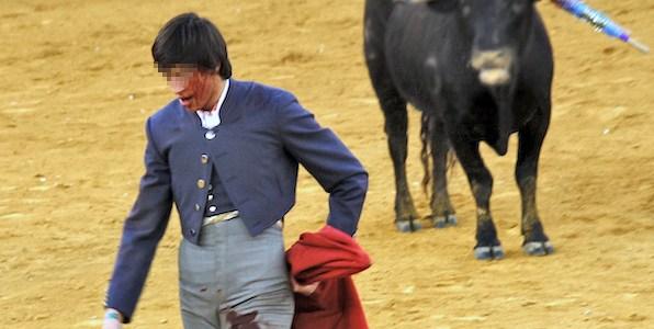Parlamento holandês exige fim dos subsídios da UE para as touradas