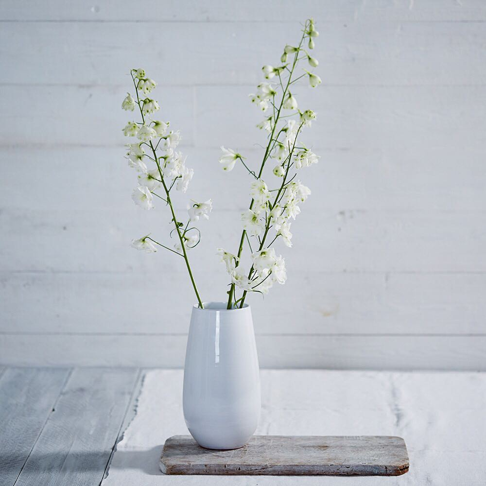 Summer flowers @thewhitecompany #summer #white #sun #flowers #stilllife #stilllifephotography #london