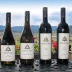 Discovering Ancient Hill Winery