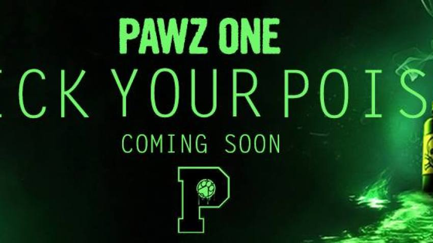PERFORMING LIVE DEC 14TH:  PAWZ ONE