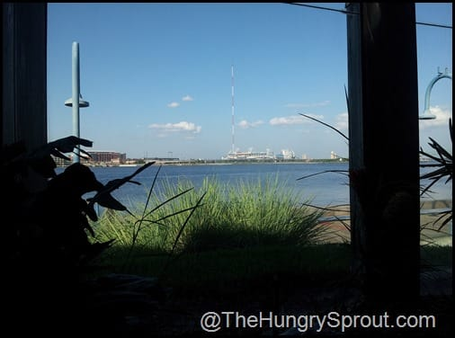 Chart House Jacksonville view