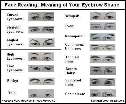 Face reading guide