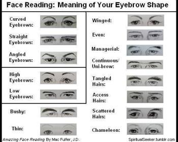 eyebrow-types