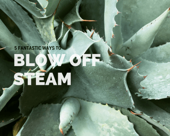 blow-off-steam