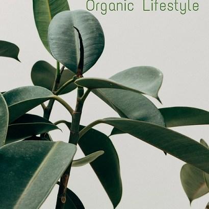 Health Benefits of Organic Lifestyle