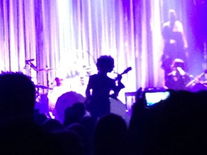 Prince Concert March 2015-7