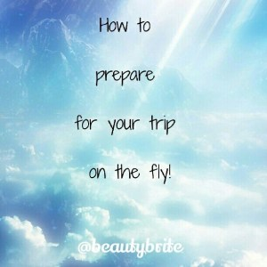 How to Prepare for your Trip on the Fly