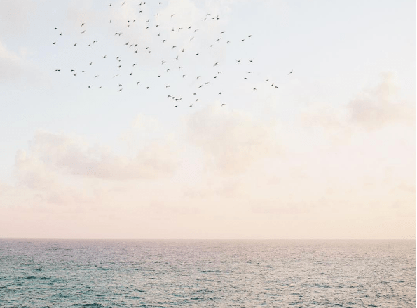profumi-che-odorano-di-mare