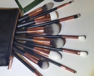Arose Brushes 4
