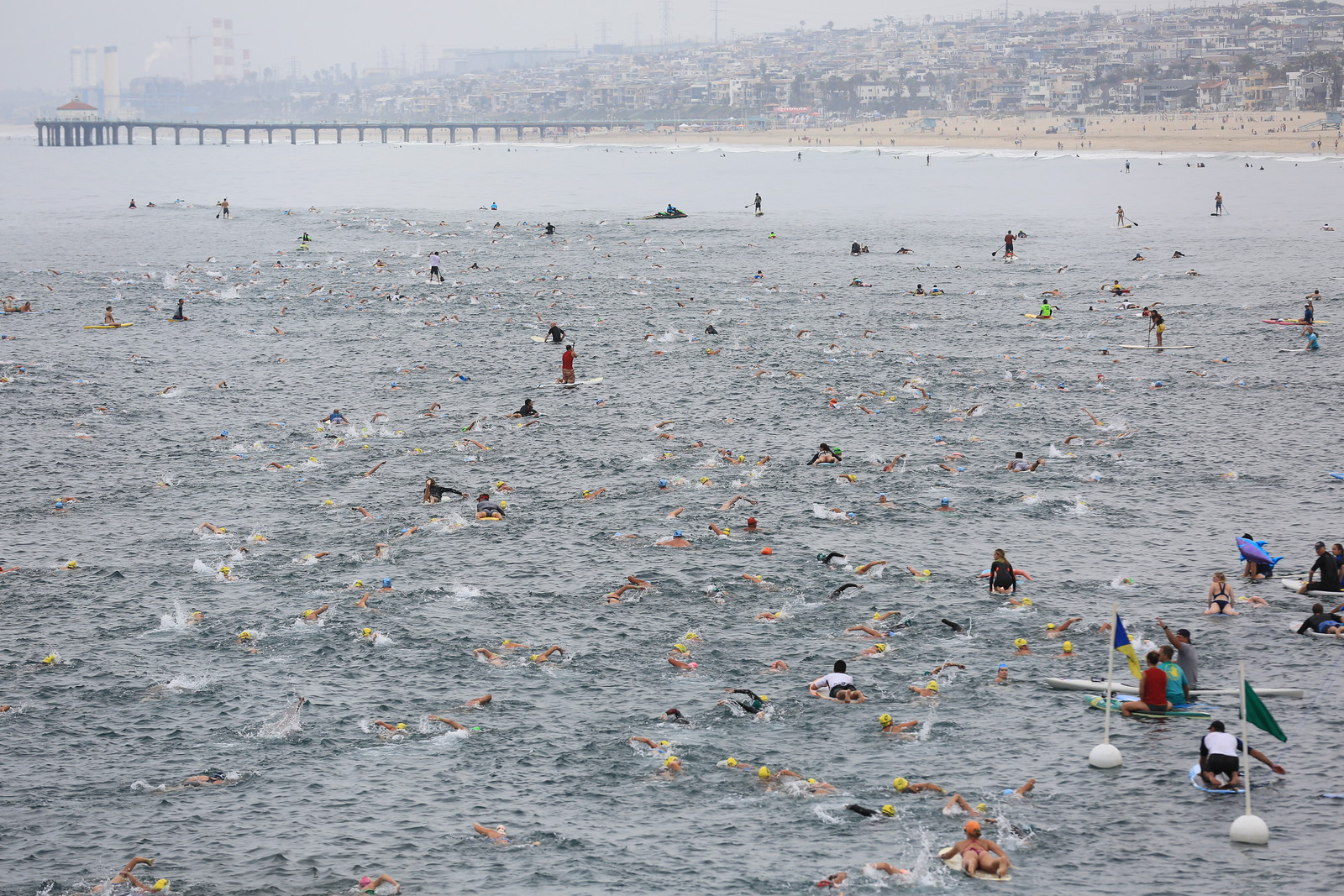 Swimmers in 2016 race