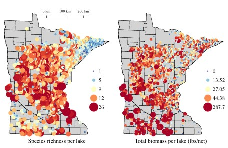 Summary of species richness (count) and total biomass (lbs per net) for lakes in Minnesota.