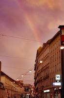 Vienna Rainbow