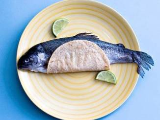 fish taco story photo tickle me fish tacos