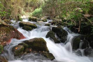 Banias Waterfalls